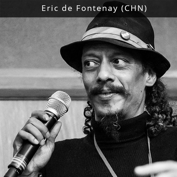 Eric de Fontenay - skaitmeninių medijų įmonės MusicDish bei vieno didžiausių muzikos naujienų kanalų Mi2N įkūrėjas. 2010 m., siekdamas užmegzti ryšius tarp Kinijos ir kitų šalių muzikos sektorių, de Fontenay įkūrė MusicDish*China. Dirbdamas tarptautiniu Taivano vyriausybės informacijos biuro konsultantu, jis yra koordinavęs Taivano kultūrines misijas Prancūzijoje, Kanadoje ir JAV. Eric yra populiariausios Kinijos roko grupės Second Hand Rose vadybininkas tarptautinėje rinkoje, o taip pat dirba su tokiomis Pekino roko grupėmis kaip Iron Kite, Gemini ir Namo. De Fontenay atstovauja ir užsienio muzikos grupių interesams Kinijoje, organizuoja jų turus. Jis yra organizavęs diskusijas ir parodas NYCxDesign ir Kinijos Institutui, jo straipsnius ir interviu yra viešinę tokie media kanalai kaip China Daily, CCTV America ir China Today. 2016 m. Eric buvo išrinktas į mandarinų lyderių garbės sąrašą.